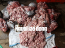 Phát hoảng với hơn 150 kg nội tạng heo và huyết bò hôi thối