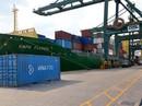 Xuất khẩu gặp rào cản bảo hộ