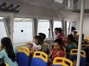 Cần định hình cho buýt đường sông