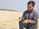 Cá chết dạt vào bờ biển Quảng Trị là do khai thác nổ mìn