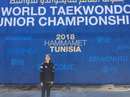 Kim Ngân giành vé cho taekwondo Việt Nam dự Olympic trẻ 2018