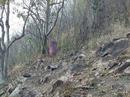 Phát hiện người phụ nữ mặc váy đỏ treo cổ trên núi