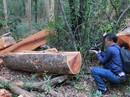 Xâu xé rừng Yók Đôn: Tấn công tứ phía