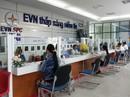 Ngành Điện miền Nam: Tăng cường rà soát giá bán điện cho người thuê nhà
