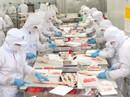 Công ty CP Sài Gòn Food: Chung tay chăm lo cho công nhân