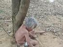 Cụ bà bị xích dưới gốc cây không bị bệnh tâm thần