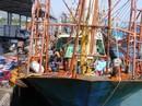 Tàu vỏ thép hỏng: Đại Nguyên Dương lại cù nhầy!