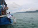 Phú Quốc thả hơn 3 triệu ghẹ con và 100 kg ghẹ trứng về đại dương