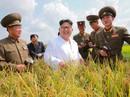 """Triều Tiên chịu đàm phán vì """"thấm đòn"""" trừng phạt: Chưa chắc!"""