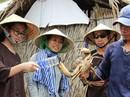 Nữ thạc sĩ bỏ phố vào rừng làm ăn với nông dân