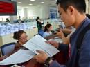 Công ty Lô Hội nợ thuế lên tới 105 tỉ đồng