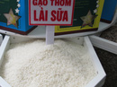 Vì sao xuất khẩu gạo sang Trung Quốc đột ngột sụt giảm?