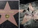 Ngôi sao của Tổng thống Donald Trump trên Đại lộ danh vọng bị đập nát