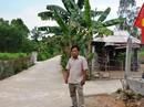 KỶ NIỆM NGÀY THƯƠNG BINH - LIỆT SĨ (27-7) (*): Hết mình cho nông thôn mới