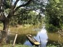 """Một ngày thư giãn ở khu bảo tồn """"Cánh đồng bất tận"""""""