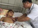 Bị rắn hổ mang cắn, bé trai 10 tuổi suýt mất cánh tay vì đắp hạt đậu lào