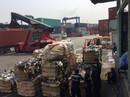 Hàng ngàn container phế liệu tồn ở cảng: Không ai chịu trách nhiệm!