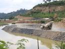 """Vụ """"Quyết lấy rừng đặc dụng làm thủy điện"""": Nhiều câu hỏi rơi vào im lặng"""