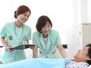 Cơ hội nghề nghiệp hấp dẫn cho điều dưỡng Việt Nam tại Đức