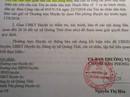 """Bí ẩn 26 lô đất cấp cho cán bộ ở Thanh Hóa: UBND """"phớt"""" chỉ đạo của Huyện ủy?"""