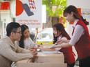 Home Credit và Momo kết hợp cho vay tiền trên ứng dụng điện thoại