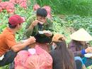 """VIDEO: Nông sản Trung Quốc nhái Đà Lạt: """"Giết chết"""" nông dân"""