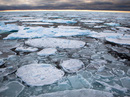 """Bể nước ấm khổng lồ đang """"nung chảy"""" Bắc Cực"""