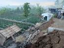 Động đất Indonesia: Du khách ùn ùn tháo chạy khỏi đảo thiên đường