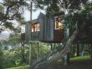 Những ngôi nhà trên cây tuyệt đẹp ai cũng muốn sống thử