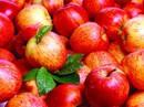 """4 loại rau quả là """"vua"""" thải độc và trẻ hóa nên ăn"""