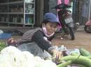 """Thơm thảo """"chợ rau miễn phí"""" cho người nghèo"""