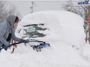 Mỹ: Lạnh kỷ lục, người vô gia cư chết trong thùng rác