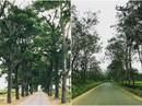Những con đường ở Tây Nguyên đẹp như cảnh trên phim Hàn