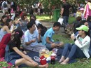 TP HCM : Các khu vui chơi đông nghẹt người ngày Tết Dương lịch