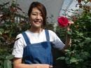 Làm giàu từ hoa hồng organic