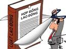 Công ty TNHH Lecei VN: Giải quyết ổn thỏa các kiến nghị của công nhân
