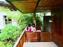 Quán cà phê hút khách với cây xanh và hồ cá