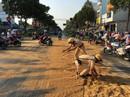 Hoá chất đổ đầy đường, người dân cùng CSGT lom khom phủ cát