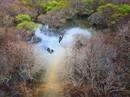 Sương giăng trên hồ Tuyền Lâm vào top ảnh đẹp trên báo Mỹ