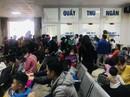 Vụ 209 học sinh mầm non nhiễm sán lợn: Công an vào cuộc điều tra