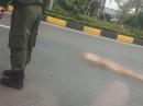 Người phụ nữ Mỹ không mặc quần áo rơi từ cầu vượt gần sân bay Nội Bài xuống đường