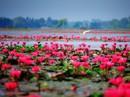 Tây Ninh - vùng đất cuốn hút từ vẻ đẹp bình dị giữa đời thường