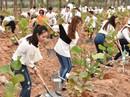FLC: trồng 10.000 cây xanh tại Lễ phát động chiến dịch Go Green 2019