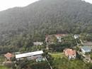 Chủ tịch Hà Nội yêu cầu cưỡng chế các công trình vi phạm đất rừng Sóc Sơn
