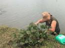 Những phụ nữ mê sông, nhặt rác