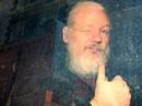 Ecuador hứng 40 triệu cuộc tấn công mạng sau biến cố Wikileaks