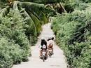 Đến Quy Nhơn, nạp 'vitamin sea' cho ngày hè nóng nực