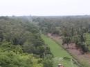 Hàng ngàn hecta rừng ở Cà Mau có nguy cơ cháy