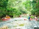 Tiên cảnh giữa núi rừng Phong Nha