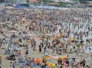 24 trẻ em lạc gia đình lúc vui chơi, tắm biển Vũng Tàu